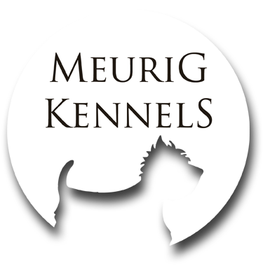 Meurig Kennels